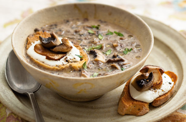Quick And Easy Mushroom Soup Recipe Allaboutkiids